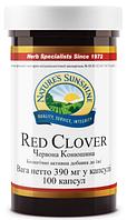 Красный Клевер,для селезёнки,костного мозга,кроветворение
