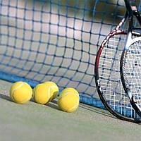 Сетка большого тенниса (игровая)
