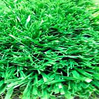 Искусственная трава GEO 40
