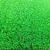 Искусственная трава GEO 15