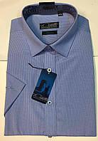 Рубашка мужская Castello короткий рукав Graf 16-K-sl