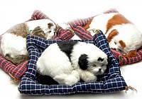 Щенок спящий на коврике (34х26х7 см)