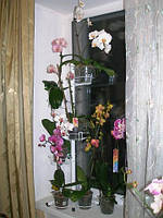 "Подставка для цветов ""Кет"", фото 1"