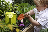 Стоит ли садоводам ожидать господдержку в 2017 году?