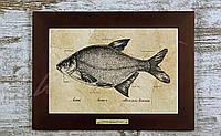Картина Fish-Point «ЛЯЩ»