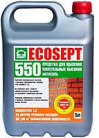 Средство для удаления минеральных высолов Ecosept 550 5л