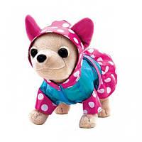 Собачка Chi Chi Love Чихуахуа Веселый дождик Оригинал Simba