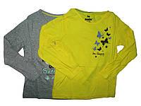 Реглан для девочки, ( 2 шт в упаковке), размеры 86/92, 110/116, Lupilu, арт. 808560