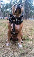CoLLar Шлея грузовая с утяжелителями для крупных-средних собак №3 (0660)