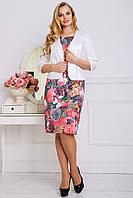 Нарядный костюм платье+жакет из жаккарда, батал (разные расцветки)