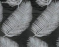 Обои белые перья на черном фоне 58782.