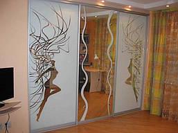 Двери купе з наполнением зеркало пескоструй (для шкафов, гардеробных), фото 3