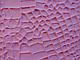 """Молд силиконовый для декора """"Кожа текстура"""" 17 см 10,5см, фото 3"""