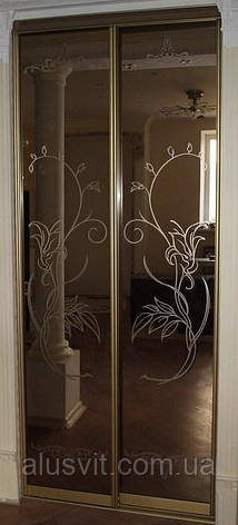 Фасады двери купе наполнение зеркало бронза , фото 2