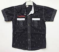 Рубашка 5-8 лет с коротким рукавом черный