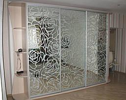 Двери купе з наполнением зеркало пескоструй (для шкафов, гардеробных), фото 2
