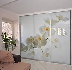 Фасады(для шкафов, гардеробных) купе  фотопечать глянец, фото 2