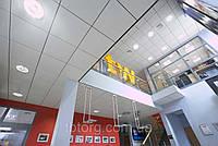 Подвесные потолки Armstrong Newtone, фото 1