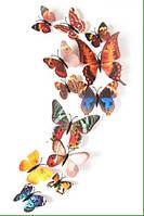 Бабочки цветные на магнитах и липучке 12шт