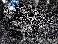 """Гравюра Премиум """"Волк"""" (серебро), фото 1"""
