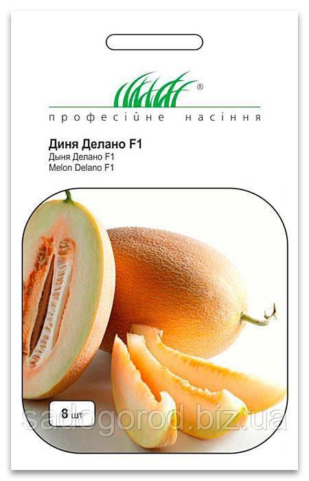 Семена Дыни, Делано F1, 8 семян Nunhems  Zaden (Голландия)