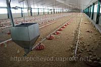 Обладнання підлогове для вирощування бройлерів, качок, молодняку курей-несучок