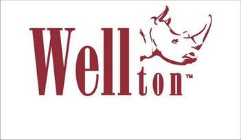 "Малярный флизелин ""WELLTON"""