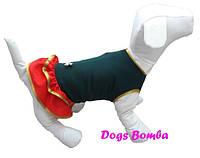 Платье O-37 для собак DogsBomba