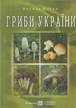 Гриби України Козак, фото 3