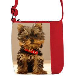 Красная детская сумка для девочки с принтом Йорк
