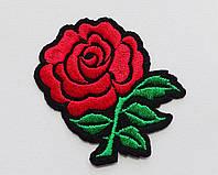 Аппликация (термо) роза красная на черн.осн. 6х5.5 см