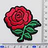 Аплікація (термо) червона троянда на чорному, фото 2