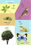 Вивчаємо англійську. Перші слова. Світ навколо нас, фото 3