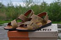 Мужские кожаные сандалии Timberland 12105 коричневые