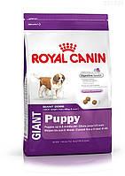 Royal Canin Gigant Puppy корм для щенков до 8 месяцев