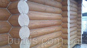 Шлифовка деревянного дома из сруба, фото 3