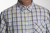 Biaggini  рубашка  c коротким рукавом  размер M  L ПОГ 58 см  б/у