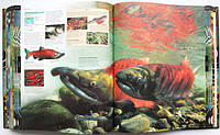 Книги для дітей про природу