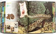 Ілюстрована енциклопедія про тварин