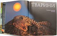 Красочная энциклопедия о животных купить