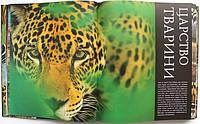 Детская иллюстрированная энциклопедия о животных Дорлинг Киндерсли