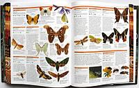 Энциклопедия о животных купить