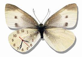 Часы настенные- картина бабочка 2) 30х45 см