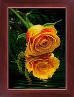 DOME LasKo Рисование камнями (5D-032) Троянда над водою
