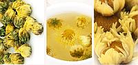 Чай хризантема китайская, фото 3