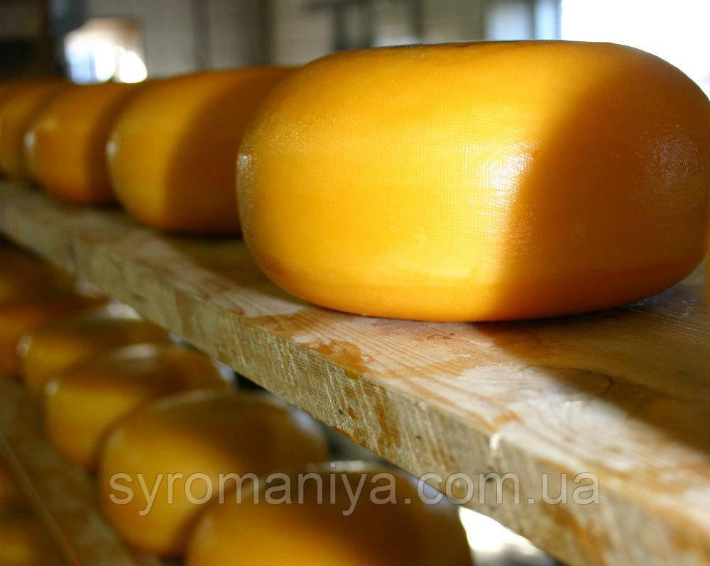 Латексное желтое покрытие для сыров 100 мл