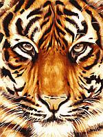 """Акриловий живопис за номерами """"Сила тигра"""" полотно 30*40 см без коробки ТМ Ідейка"""