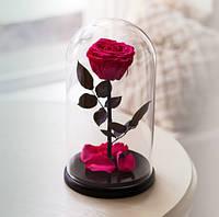 Роза в Колбе Родолит 7 карат