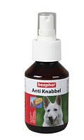 Спрей Beaphar от погризов для собак (Anti Knabbel), 100мл