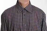 INVECE  рубашка д/р размер L - XL  ПОГ 63 см б/у